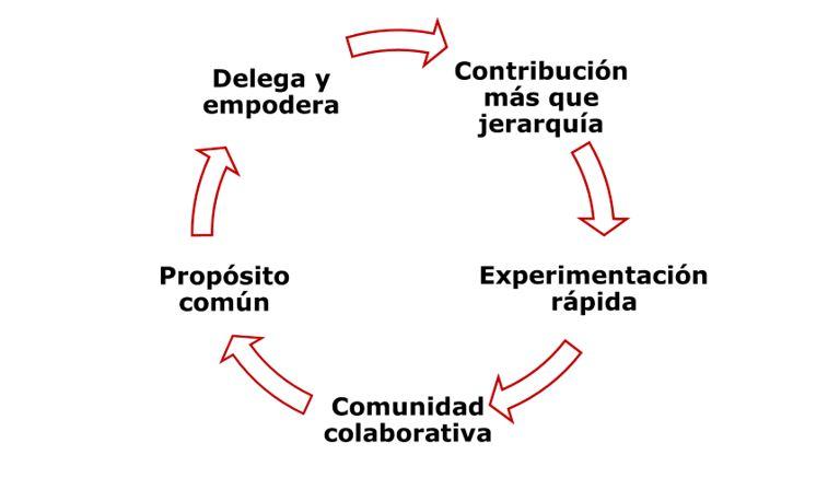 Elementos clave de una organización abierta